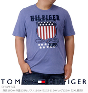 TOMMY HILFIGER Tシャツ